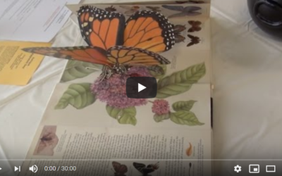 Hearth & History: Explore Pop-Up Books